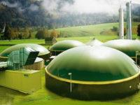 Минэнерго МО: Генерирующие объекты на биогазе готовы появиться в Подмосковье. Один из них – в Ядрово Волоколамского г. о.