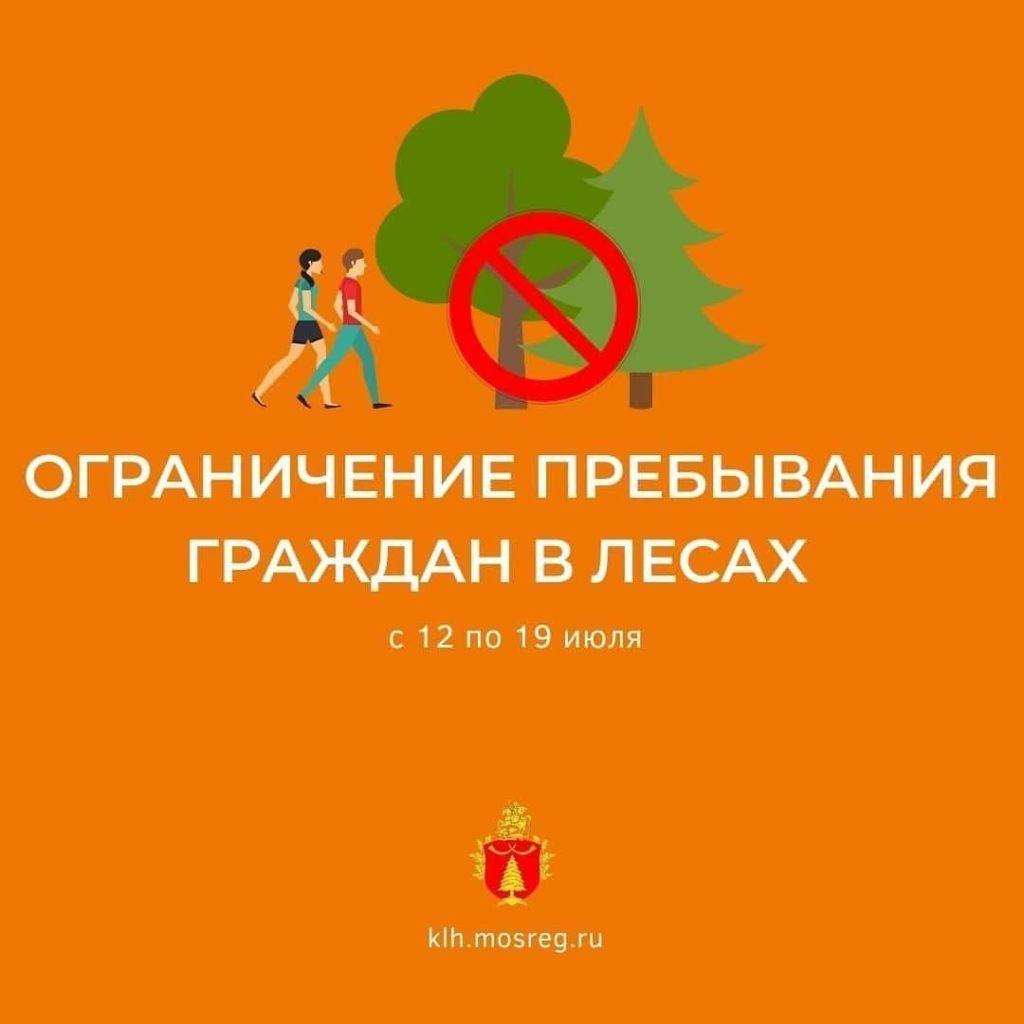 Пребывание в Волоколамских лесах временно ограничено