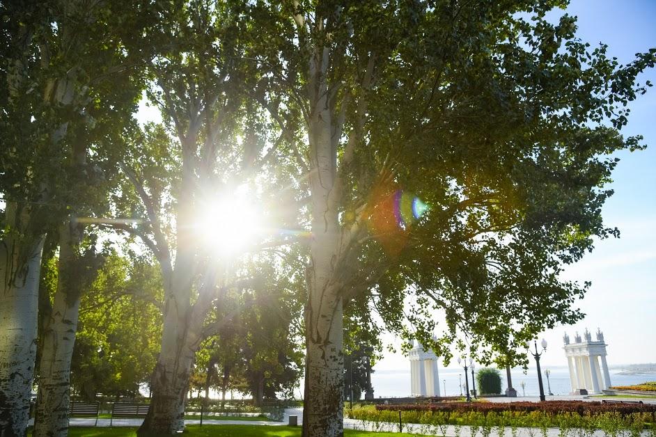 Солнечная погода без осадков ожидается в Московском регионе в выходные