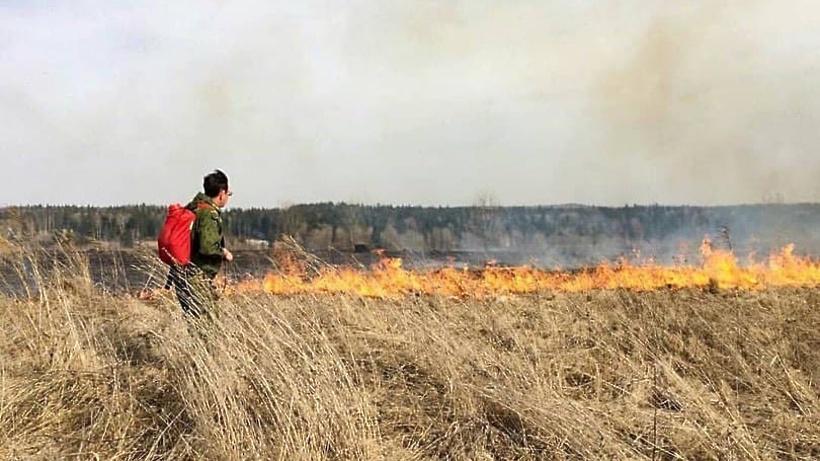 «Оранжевый» уровень опасности погоды продлили в Подмосковье из‑за риска пожаров