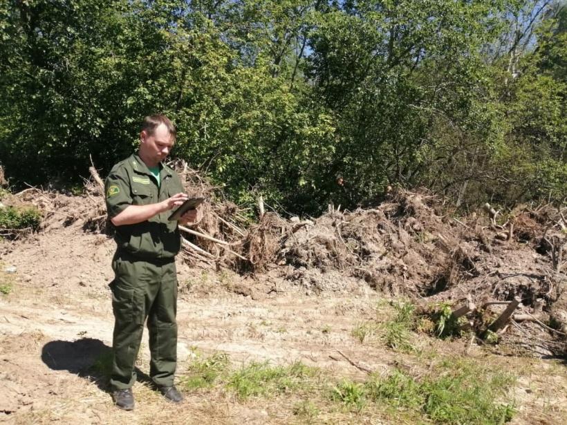 Волоколамские лесничие обнаружили нарушение правил пожарной безопасности