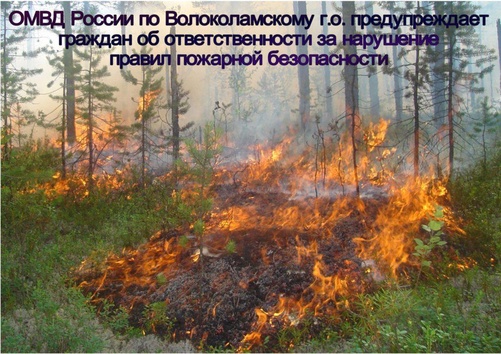 ОМВД России по Волоколамскому г.о. предупреждает граждан об ответственности за нарушение правил пожарной безопасности