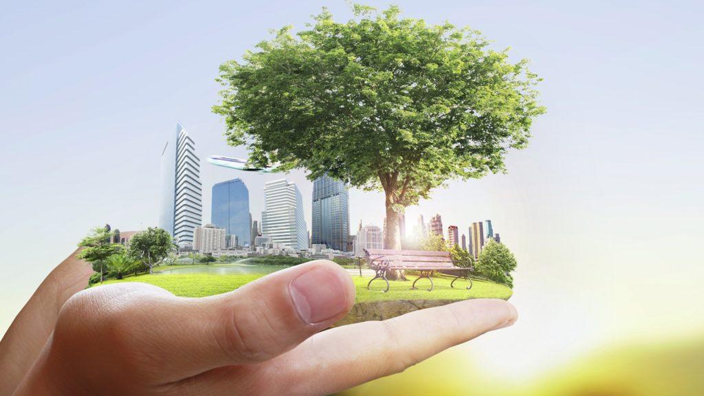 Волоколамск принимает участие в конкурсе экологических проектов