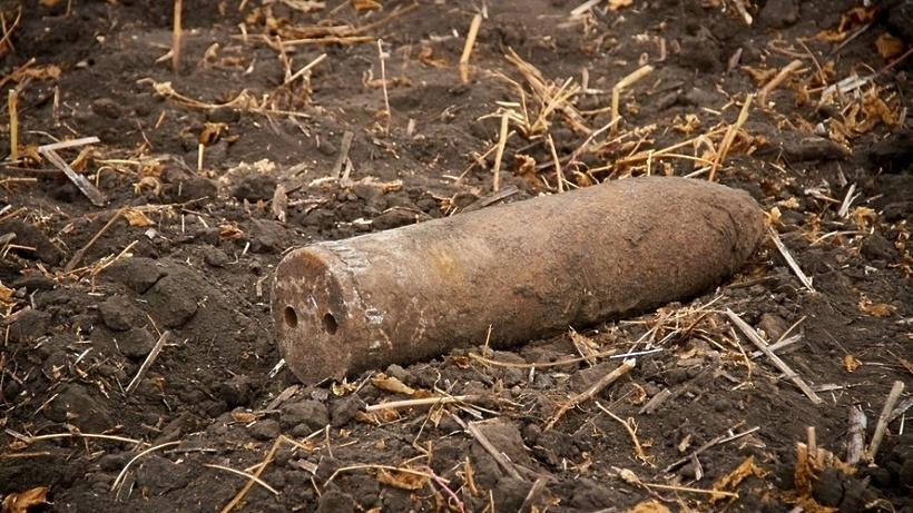 Пять боеприпасов времен ВОВ обнаружили в Подмосковье