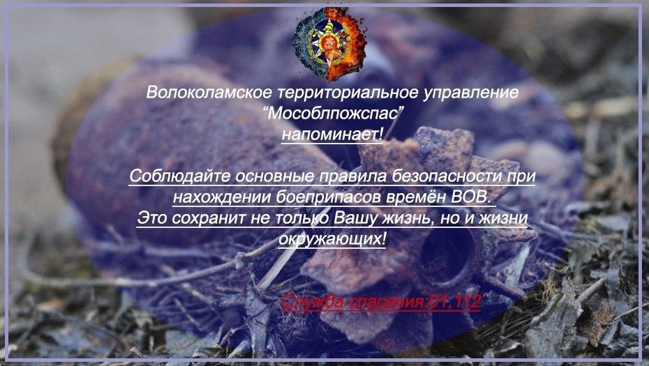 Мособлпожспас напоминает жителям Волоколамского округа правила безопасности при нахождении боеприпасов