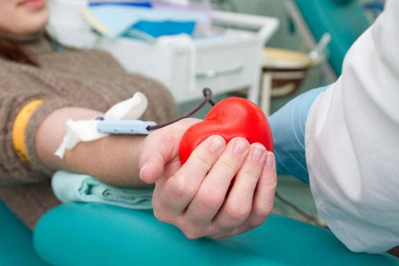 Более 30 человек сдали кровь в День донора в Шаховской ЦРБ