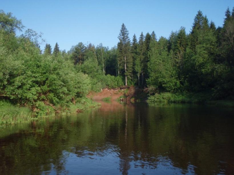 В горокруге Шаховская очистят пруды и плотины