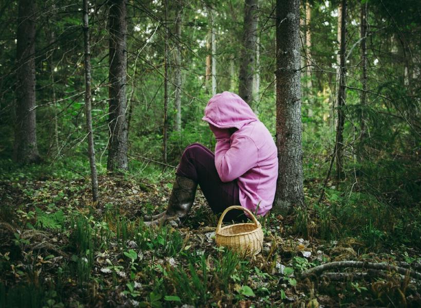 За месяц в лесах городского округа Лотошино заблудились 7 человек