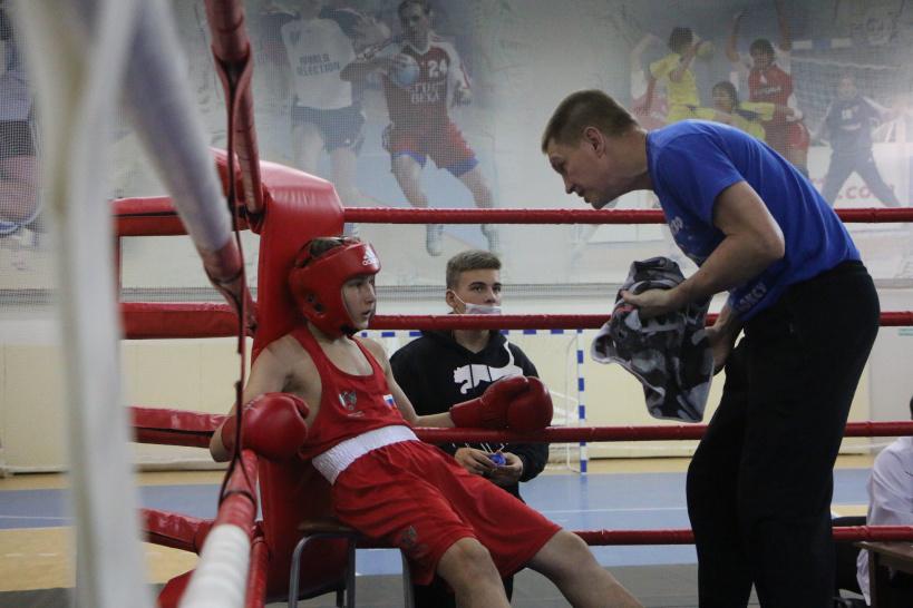 Турнир по боксу в г.о. Лотошино вышел на новый уровень