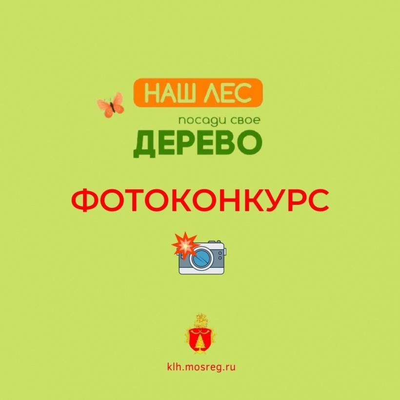 Жители Волоколамского округа могут принять участие в фотоконкурсе к акции «Наш лес. Посади своё дерево»