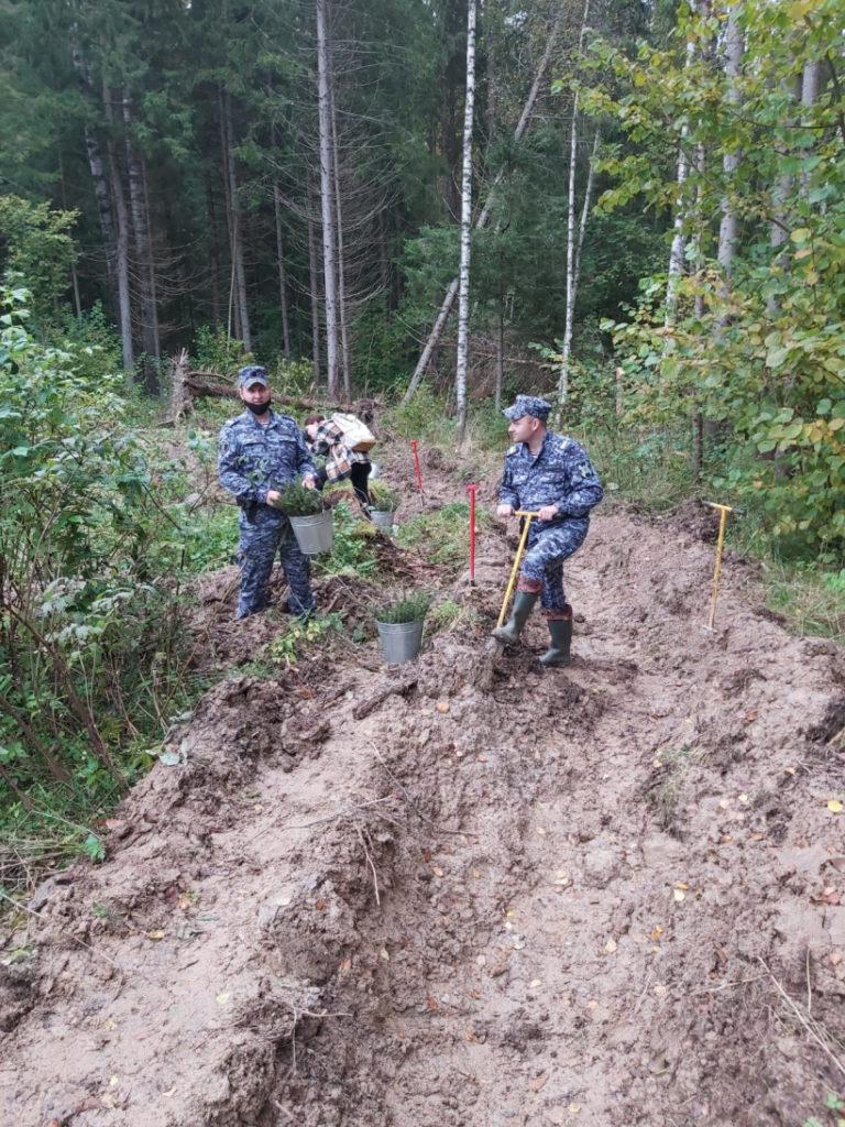 Волоколамские росгвардейцы приняли участие в акции «Наш лес. Посади своё дерево»