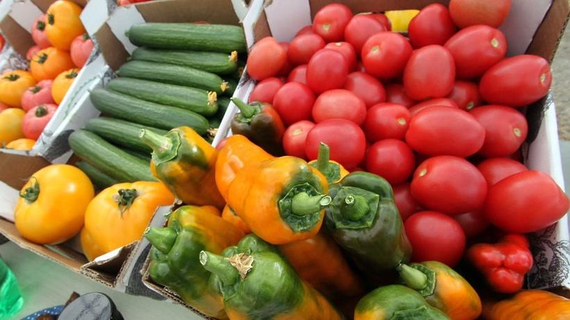 Цены на сезонные овощи в Подмосковье в среднем снизились почти вполовину
