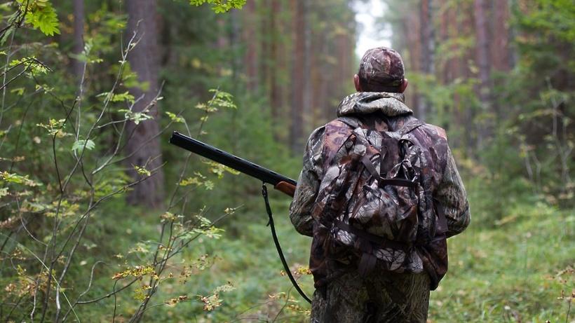 Охота на копытных откроется в Подмосковье 1 октября