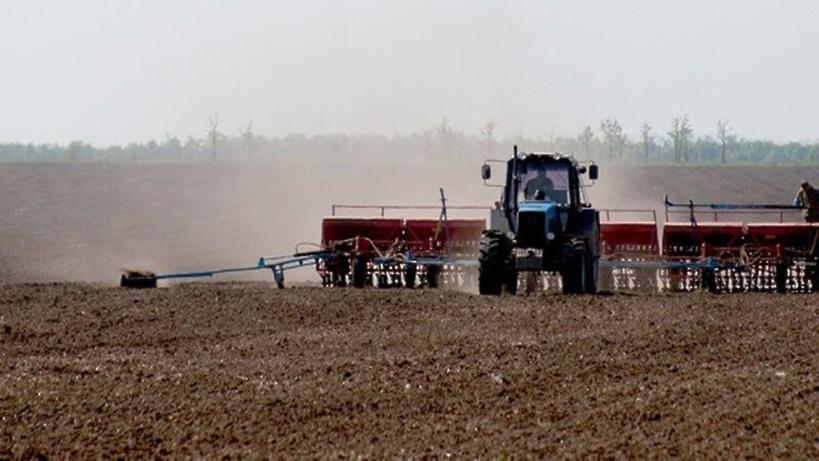 В Подмосковье началась осенняя посевная кампания озимых зерновых культур
