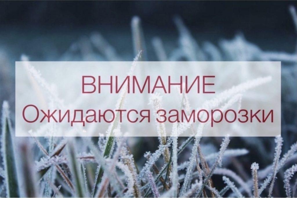 МЧС предупредило жителей Волоколамского округа о заморозках до минус 2 градусов ночью и утром 7 сентября