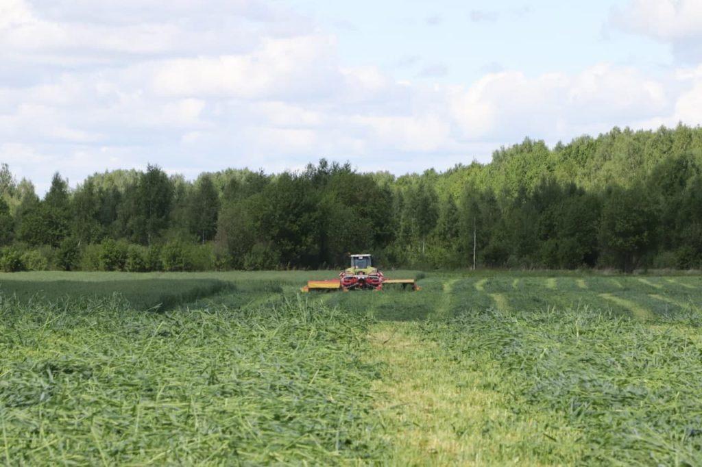 В Волоколамском округе для развития сельского хозяйства переданы почти 260 га земли трём крестьянско-фермерским хозяйствам