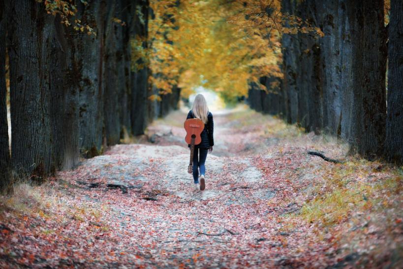 Настоящая осень в Волоколамском округе заменит бабье лето в середине недели