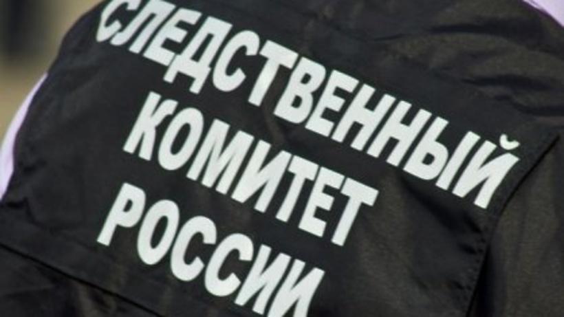 СК возбудил новое дело после падения частного вертолета в Подмосковье
