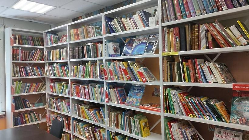 Библиотеки Подмосковья обновят книжный фонд благодаря поддержке правительства РФ