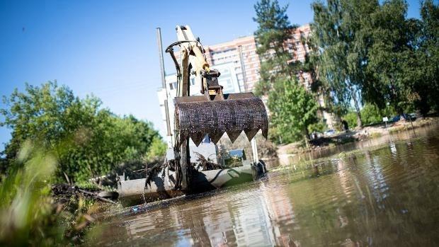 41 пруд на территории Волоколамского округа выбран для голосования на «Доброделе»